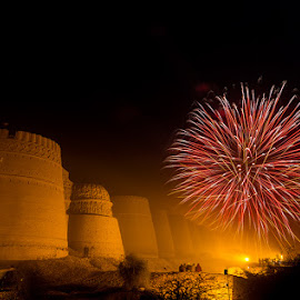 Desert Bonanza by Ahmed Zaidi - News & Events Entertainment ( cholistan, desert bonanza, medley of fireworks, derawar, cholistan desert, derawar fort,  )