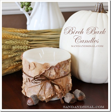Birch bark candle thumbnail