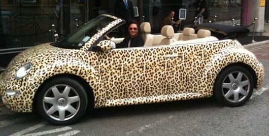 LeopardCar-610x8131