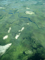 Flight from Chobe to Okavango Delta - Botswana