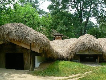 11. Muzeul Satului - Bucuresti.JPG