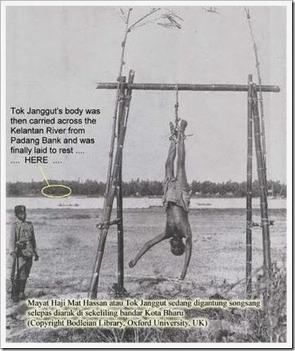 tokjanggut- digantung sonsang