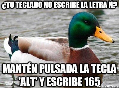 consejos del pato (6)