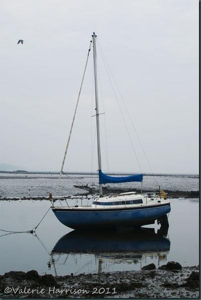 42-yacht
