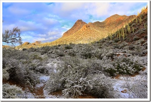 150101_TucsonMtPark_0016