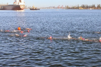 Foreshore Tri swim