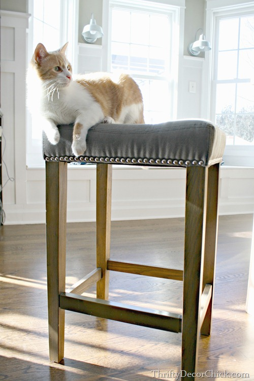 canvas bar stool. The Right Island Stool from Thrifty Decor Chick
