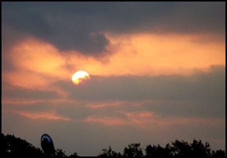 morning sunrise1