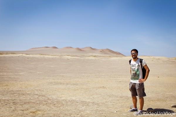 Peru-Paracas-Huacachina-que-ver-hacer-reserva-natural-dunas-unaideaunviaje.com-00001.jpg