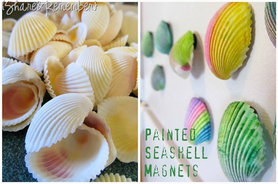 Painted Seashell Magnets