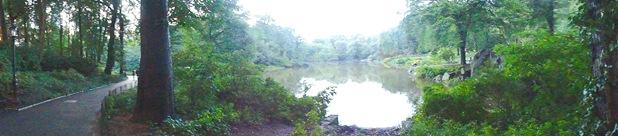 NY Central Park South