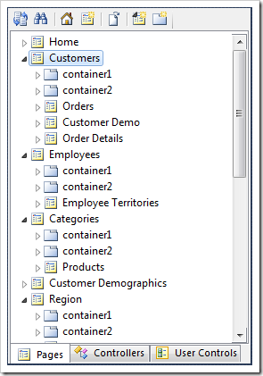 Customers page in the Project Explorer.