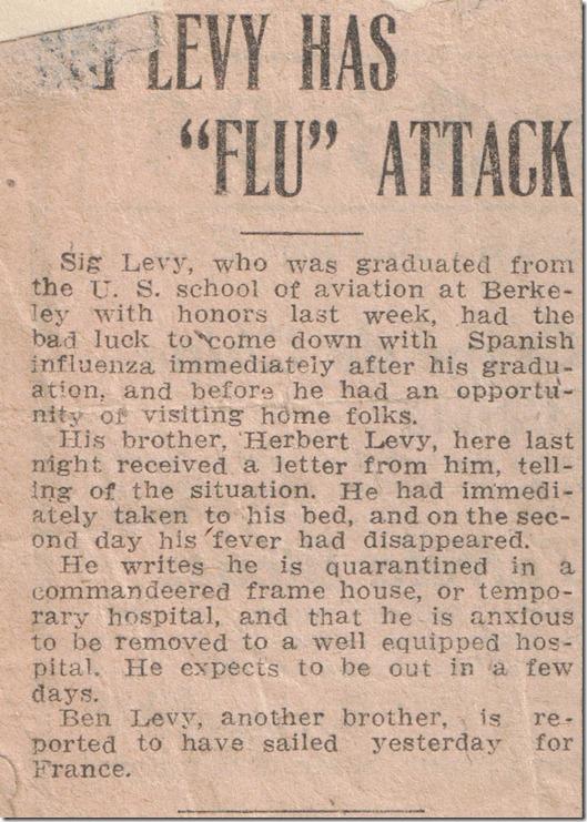 Sig Flu Attack