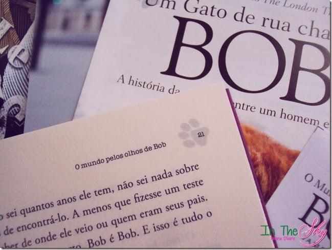 O Mundo pelos olhos de bob_01