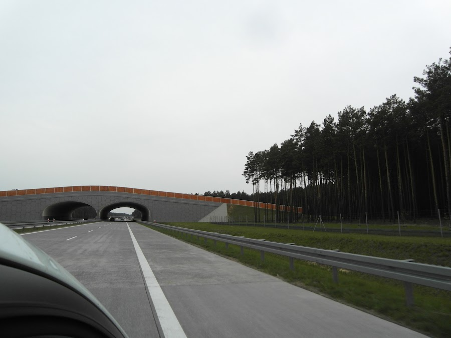 Загороженная дорога