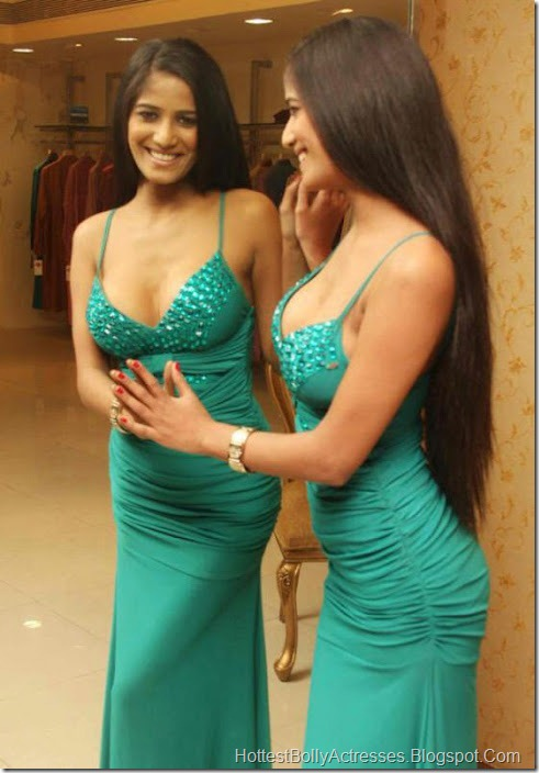 Poonam Pandey Hot Pics in Tight Dress 1