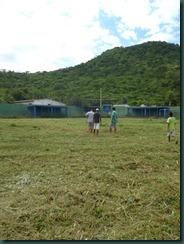 soccer field 052