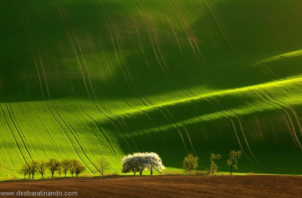 landscapes-paisagens-desbaratinando (10)