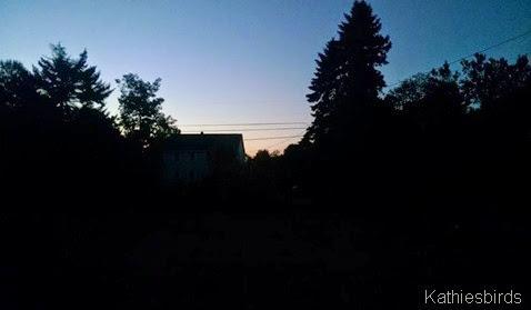 1. Dawn 9-19-14