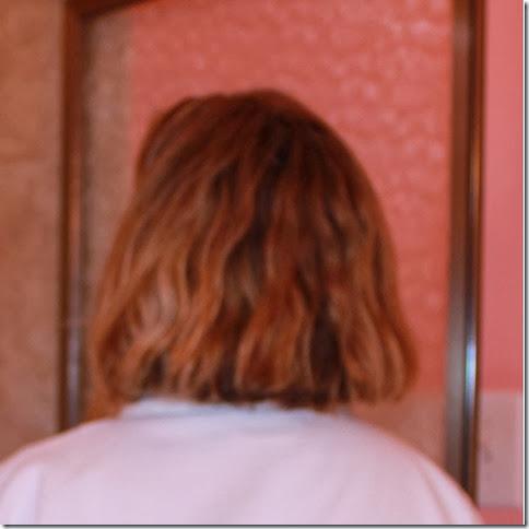 Hair before Clay Shampoo
