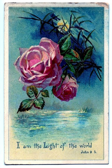 rosemoonlightgfairy