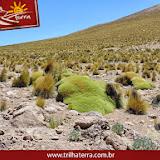 Fotos tiradas em Iquique - Chile