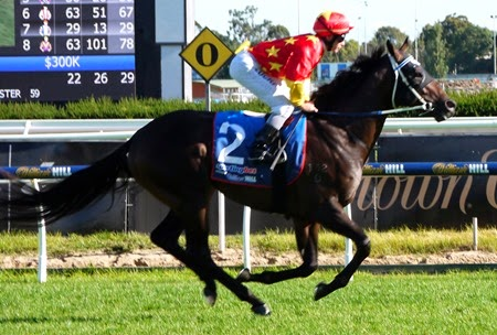 race 8_orr stakes_dissident 4