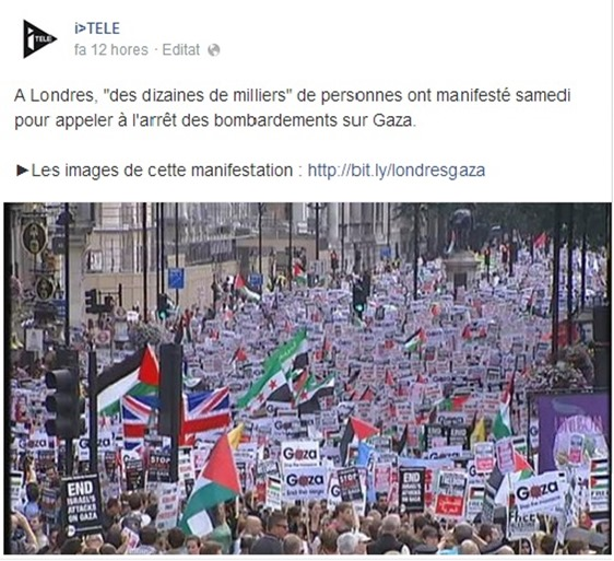 solidaritat Palestina 2