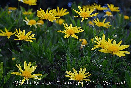 Glória Ishizaka - Primavera 2013 - 3