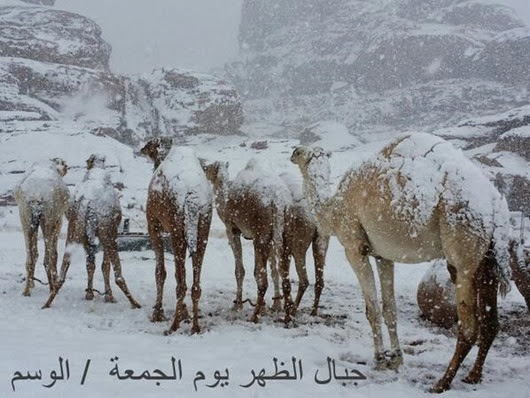 snow-falls-on-egypt-pyramids-6(2)