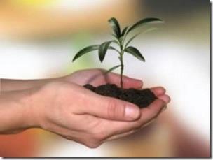 """Se inicia un nuevo curso de capacitación para jóvenes emprendedores """"Capital Semilla"""""""