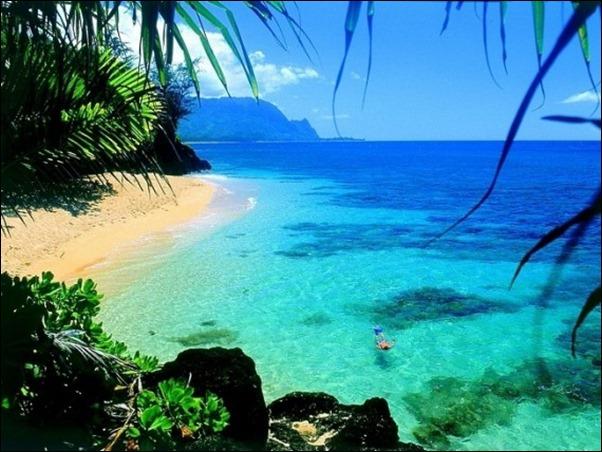 هاواي
