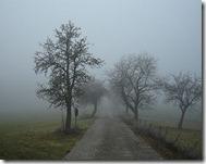 340px-Nebel_in_der_Region_Rhön_01386