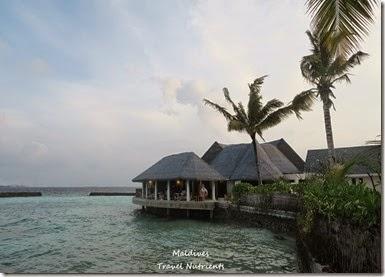 馬爾地夫 Centara渡假村 (36)