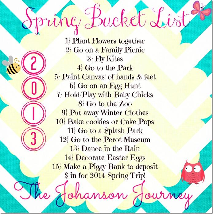 The Johanson Journey Bucket List 2013
