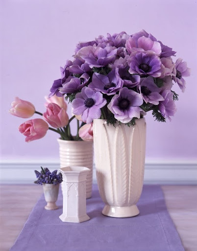 A selection of cylinder vases. (Martha Stewart Living)