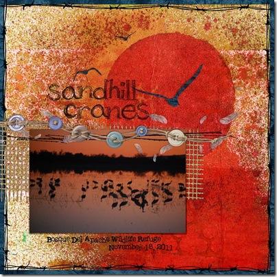 sandhillcranes_11-18-11