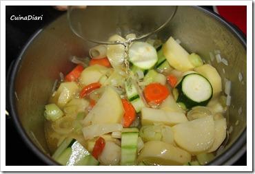 1-1-crema verdures i cruixents-4