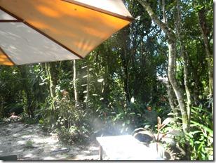 casa ilha 2012 003