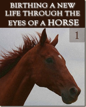 1072-birthing-a-new-life-through-the-eyes-of-a-horse-part-1