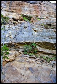 31b - Rock Garden Trail - A few more cliffs
