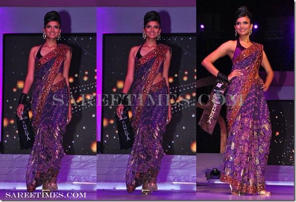 Designer_Embroidery_Sari