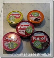 Pullmoll
