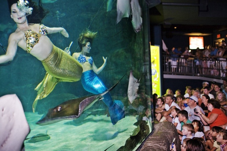 weeki-wachee-mermaids-7