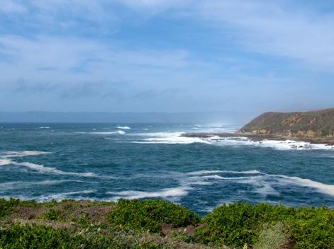 OceanBluffsTrail-16-2012-03-29-19-58.jpg