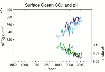 Ocean CO2  pH 1990 2012