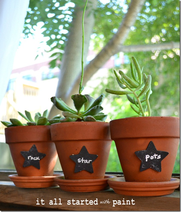 chalkboard_paint_on_succulent_plant_markers