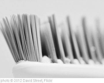 'Tooth Brush' photo (c) 2012, David Street - license: http://creativecommons.org/licenses/by-nd/2.0/