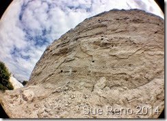 Sue Reno, The White Cliffs of Conoy, Image 3