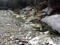 Struga reke Dragonja